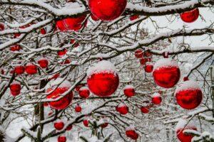Otra Navidad, nueva ilusión
